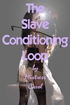 The Slave Conditioning Loop